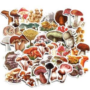 svamp - klistermärken